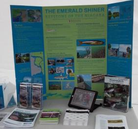 an informational display with a poster and pamphlets