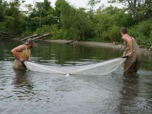 two people pulling a rectangular net through shallow water