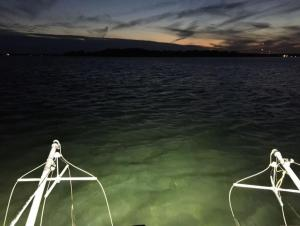 Two wire frames over water at twilight
