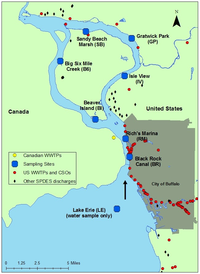 map of sampling sites on the Niagara River