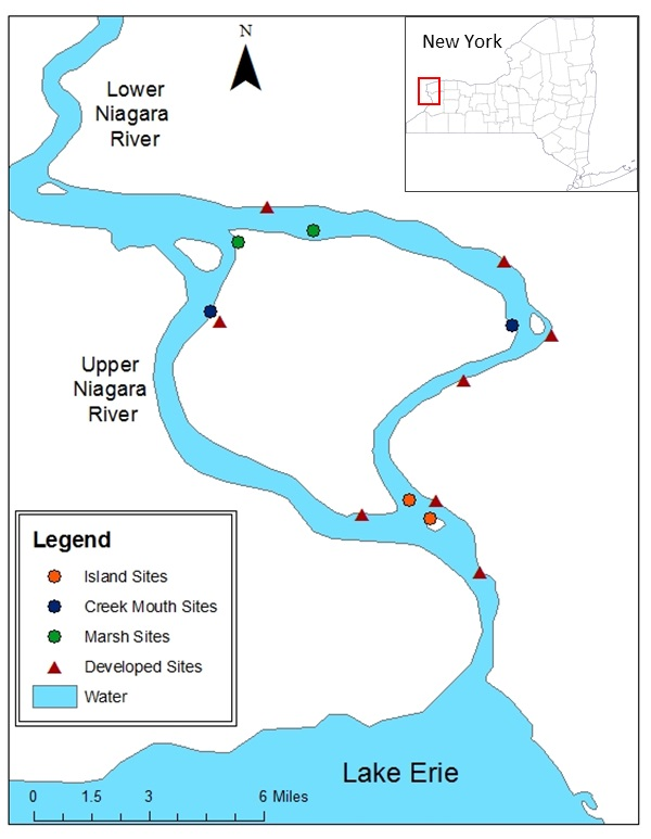 map of sample sites on the Niagara River